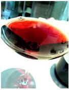 フランソワ・パラン 赤ワイン